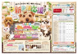 デザイン 広告 集客 満足 女性 アイキャンディ 八王子 西八王子 女性100% ペットショップ チラシ 犬 猫 かわいい フェア ペットホテル トリミング 販促 折込