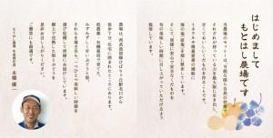 デザイン 広告 集客 満足 女性 アイキャンディ 八王子 西八王子 女性100%  東京 ブドウ 梨 鶏卵 パンフレット 観音折り